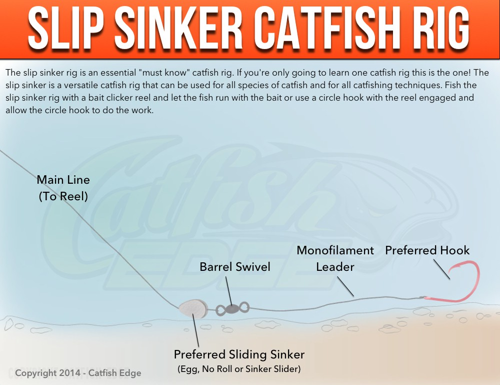 Must have catfish rigs for sure fire success for Catfish rigs for river fishing