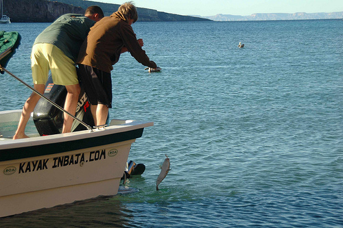How To Fish Without Using A Fishing Rod Our Team Shares Best Tips