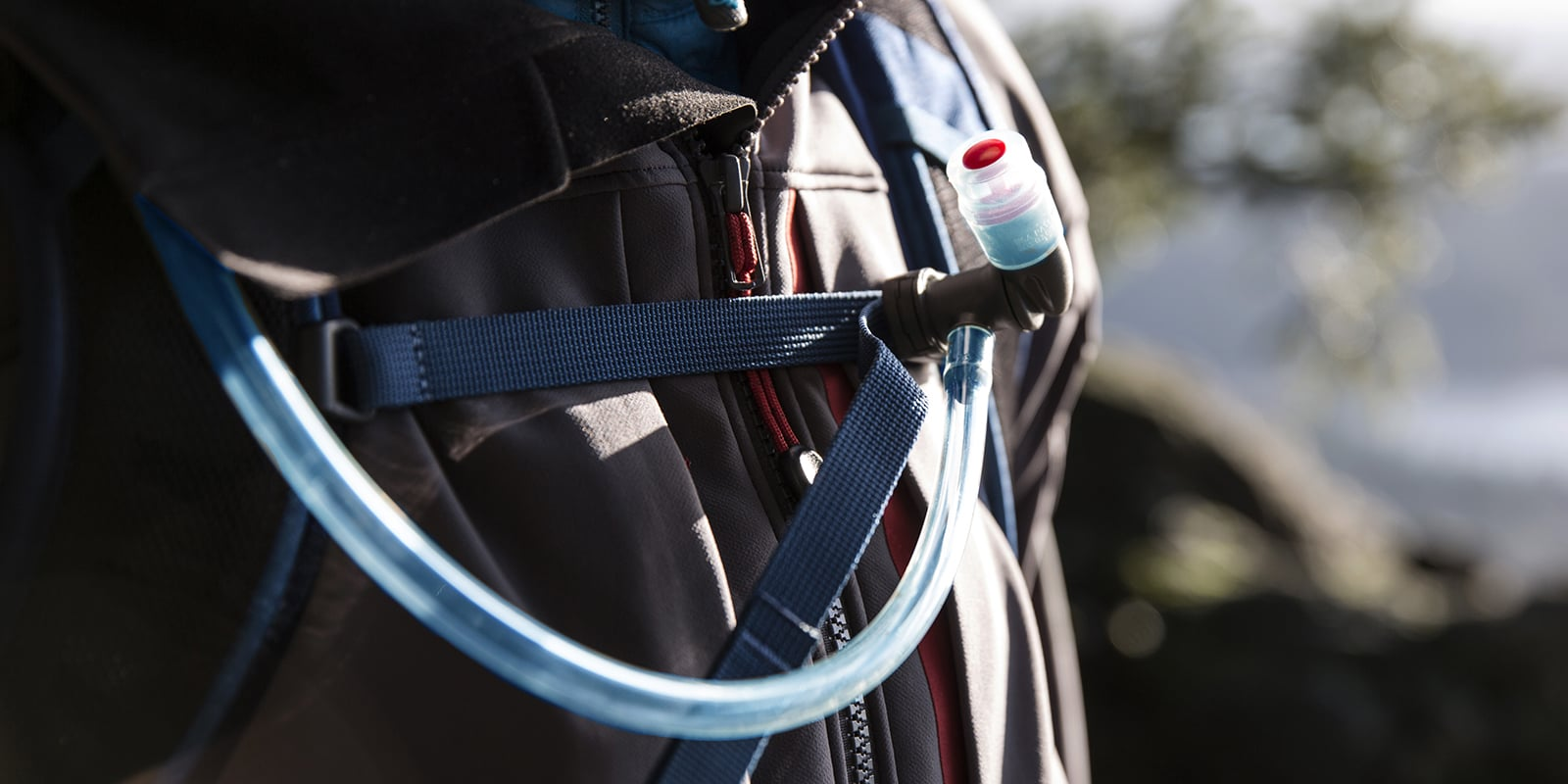 hydration pack and bladder cleaning