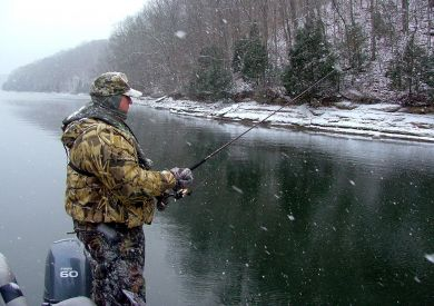 What Happens To Bass When It Gets Cold?