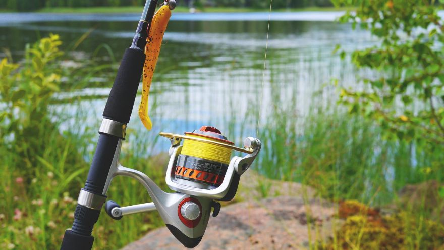 5 Fishing Forums to Join And Discuss Your Fishing Game