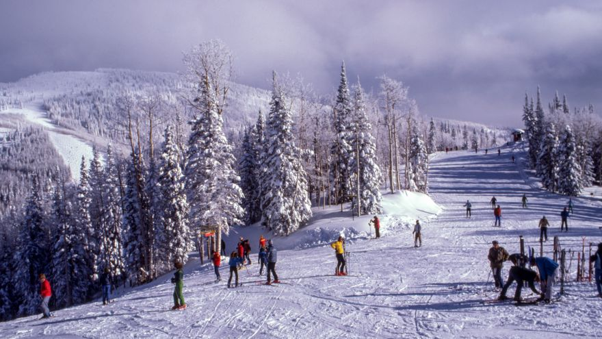 A beginner's guide on how to prepare for skiing