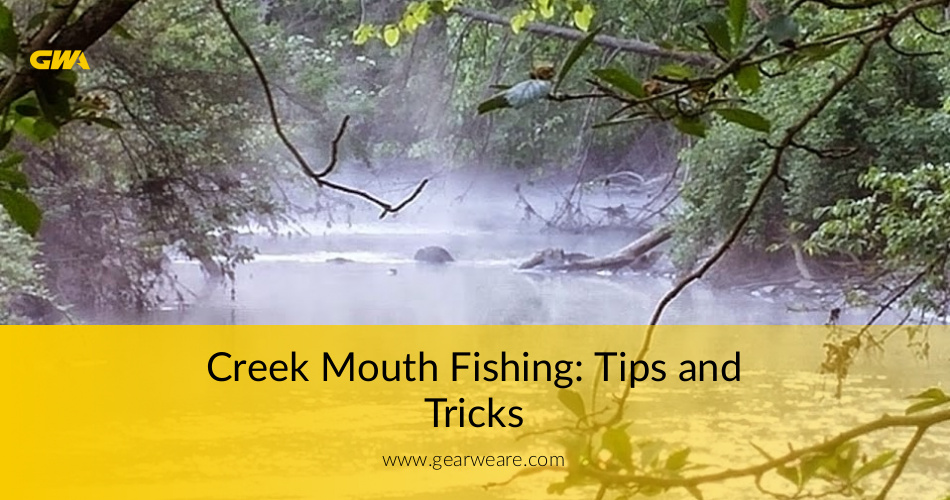 Creek mouth fishing tips and tricks for Fishing tips and tricks