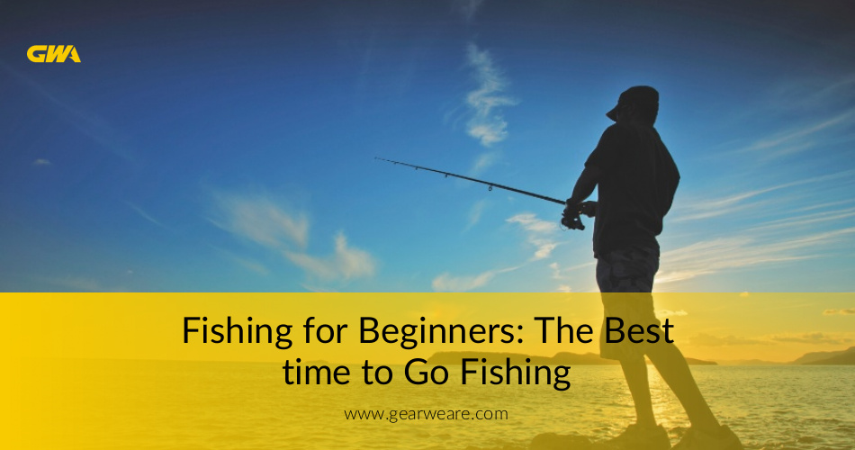Beginner 39 s guide when is the best time to go fishing for Beginners guide to fishing
